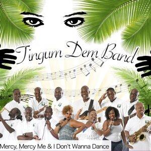 Tingum Dem Band Foto artis