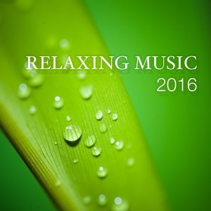 Meditation & Stress Relief Therapy & Amazing Yoga Sounds & Ambient Music Therapy (Deep Sleep, Meditation, Spa, Healing, Relaxation) Foto artis