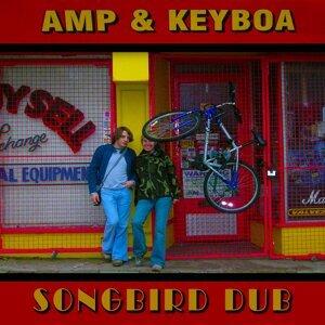 Amp & Keyboa Foto artis