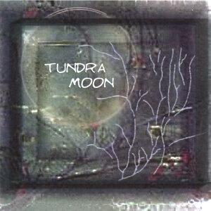 Tundra Moon Foto artis