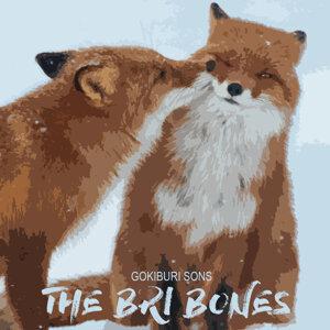 The Bri Bones Foto artis
