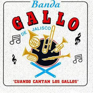 Banda Gallo de Jalisco Foto artis