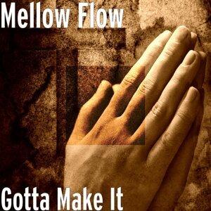 MellowFlow Foto artis
