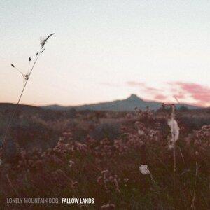 Lonely Mountain Dog Foto artis
