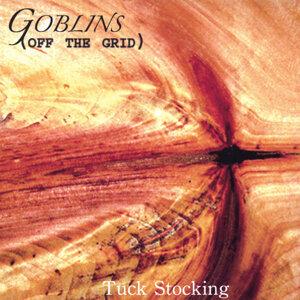 Tuck Stocking Foto artis