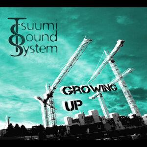 Tsuumi Sound System Foto artis