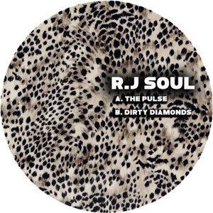 RJ Soul Foto artis