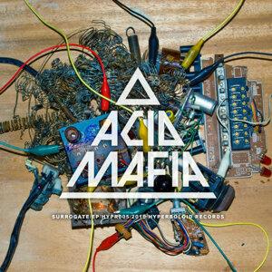 Acid Mafia Foto artis