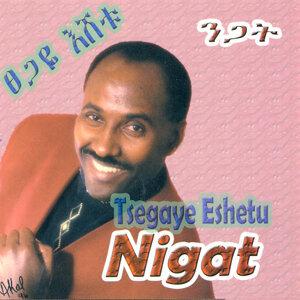 Tsegaye Eshetu Foto artis
