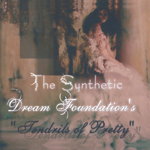 The Synthetic Dream Foundation Foto artis