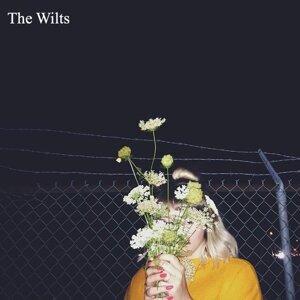 The Wilts Foto artis