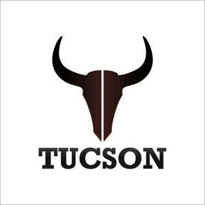 Tucson Foto artis