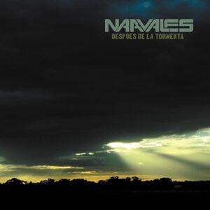 Narvales Foto artis