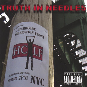 Truth In Needles Foto artis