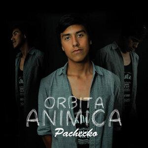 Pachecko Foto artis