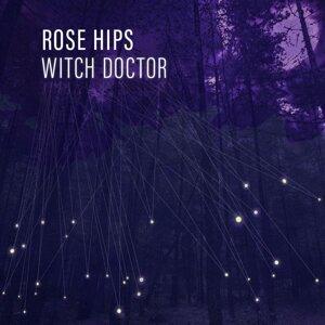 Rose Hips Foto artis
