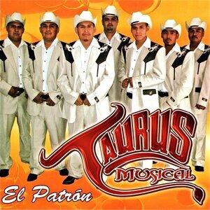 Taurus Musical Foto artis