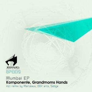 Grandmoms Hands, Komponente Foto artis