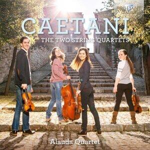 Alauda Quartet Foto artis