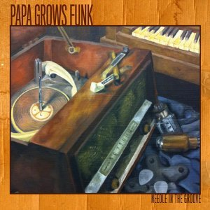 Papa Grows Funk 歌手頭像
