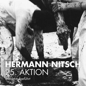 Hermann Nitsch Foto artis