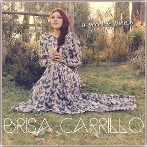 Brisa Carillo Foto artis