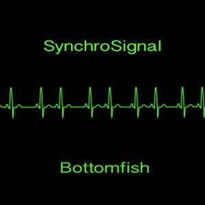 SynchroSignal Foto artis