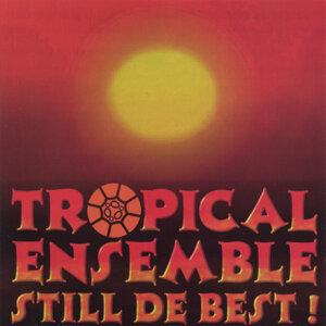 Tropical Ensemble Foto artis