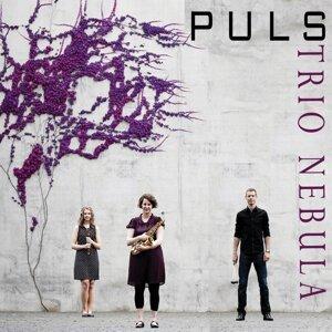 Trio Nebula Foto artis