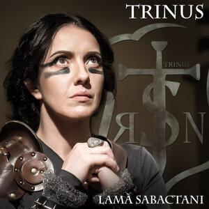 Trinus Foto artis