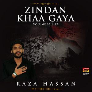 Raza Hassan Foto artis