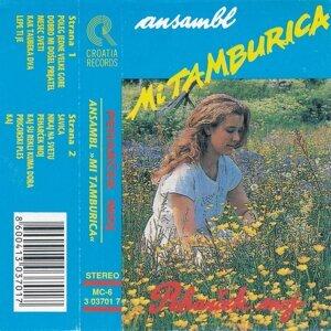 Ansambl Mi Tamburica Foto artis