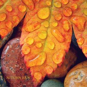 Rain Sounds, Nature Sounds & Ocean Waves for Sleep Foto artis