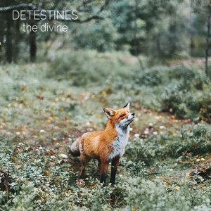 Detestines Foto artis