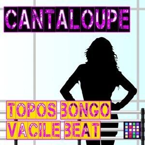Topos Bongo, Vacile Beat Foto artis