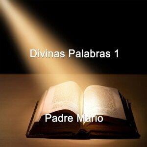 Padre Mario Foto artis