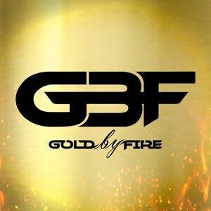 Gold by Fire Foto artis