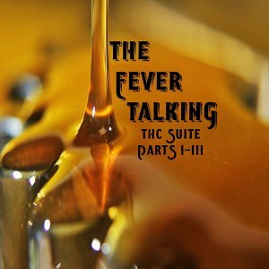 The Fever Talking Foto artis