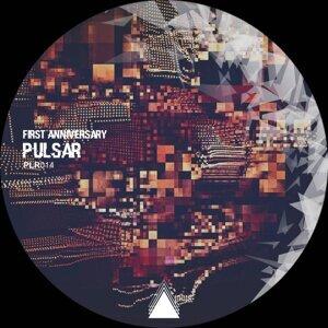 Pulsar Music Foto artis