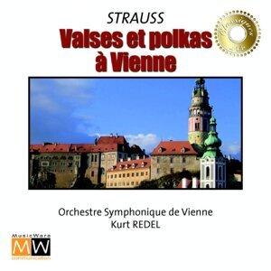 Kurt Redel, Vienna Symphonic Orchestra Foto artis
