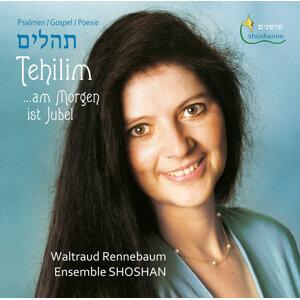 Shosham Ensemble Foto artis