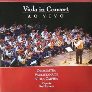 Orquestra Paulistana de Viola Caipira, Rui Torneze Foto artis