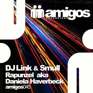 DJ Link, Smull Foto artis