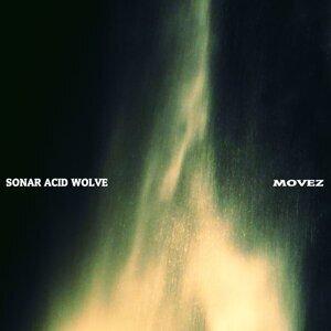 Sonar Acid Wolve Foto artis