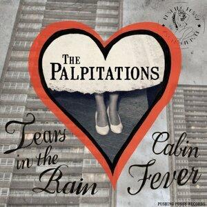 The Palpitations Foto artis