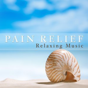 Meditation Relax Club feat. Calming Music Academy & Ayurveda & Ambient Music Collective Foto artis