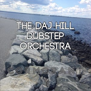 The Daj Hill Dubstep Orchestra Foto artis
