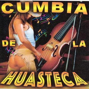 Huapangos Huasteca Foto artis