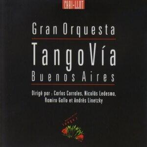 Gran Orquesta Tango Vía Buenos Aires Foto artis
