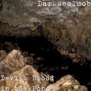 Darksealmob Foto artis